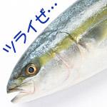 魚版「君の名は」が、名前によって苦労の絶えない世界だった(他5本)【ボケてまとめ】