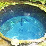 静岡県の柿田川公園にセーブポイントみたいな湧水があった!(他4本)【ツイッターまとめ】