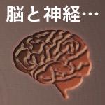 多摩川親水公園が脳から神経が出てる図に見える…上空からだと不気味な光景だった