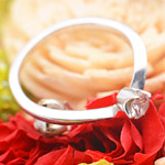 婚約指輪が入ったモンスターボールでプロポーズされた女性、感動して号泣