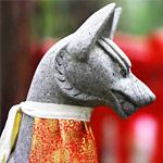 稲荷神社に狛猫がいた!狛狐とセットで福招きの御利益がありそう