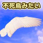 夕方に不死鳥のような雲の翼が出現!神々しい光を放っていて美しい