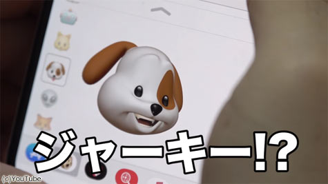 【楽天市場】ジャーキー | 人気ランキング1位~( …