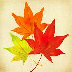 秋で作ったエドがかっこいい!紅葉を身にまとった鋼の錬金術師