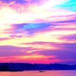 電車内から撮影した朝の風景が新海誠ワールドみたいで非常に美しかった