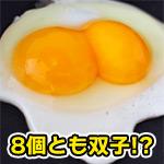 ゆで卵8個を切ったらすべて双子だった!0.04%の8乗の奇跡が発生