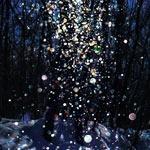 美瑛で撮影されたダイヤモンドダストが綺麗!キラキラと宝石が舞っているよう